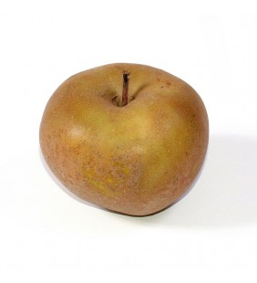 POMME CANADA GRISE-1KG